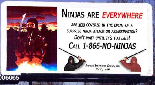 Ninja's Everywhere!