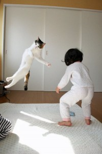 Master Cat executing a flying round house kick to the head of this young Sumo wrestler!