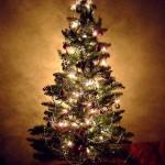 christmastree (Merry Christmas!)