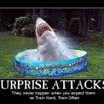 surpriseattacks (Surprise Attacks)